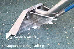 Rug Cleaning Coburg