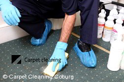 Carpet Cleaning Coburg 3058